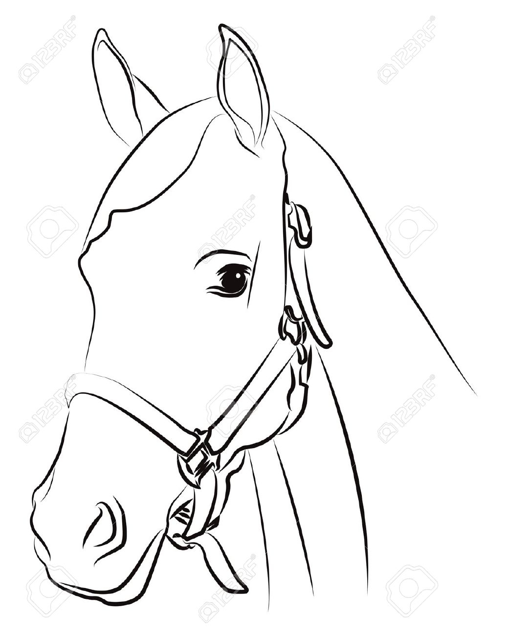 1039x1300 Simple Horse Head Drawing How To Draw A Horse Face Step By Step