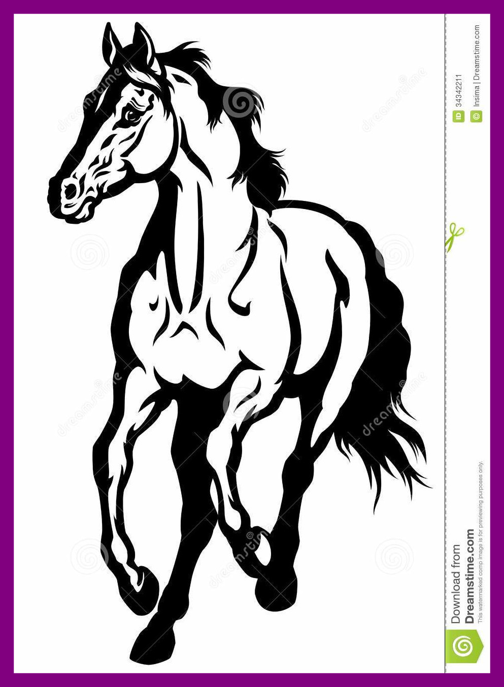 993x1354 Unbelievable Black And White Horse Running Front View Image