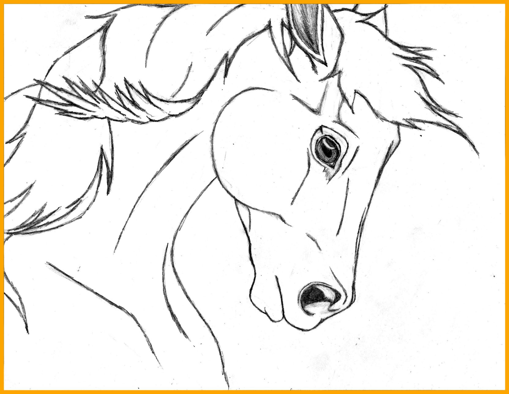 1663x1288 Awesome Horse Head Coloring Page Depetta Image For Front View