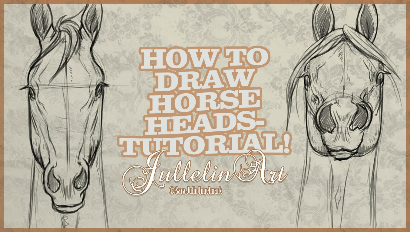 1354x768 How To Draw Horse Heads From The Front