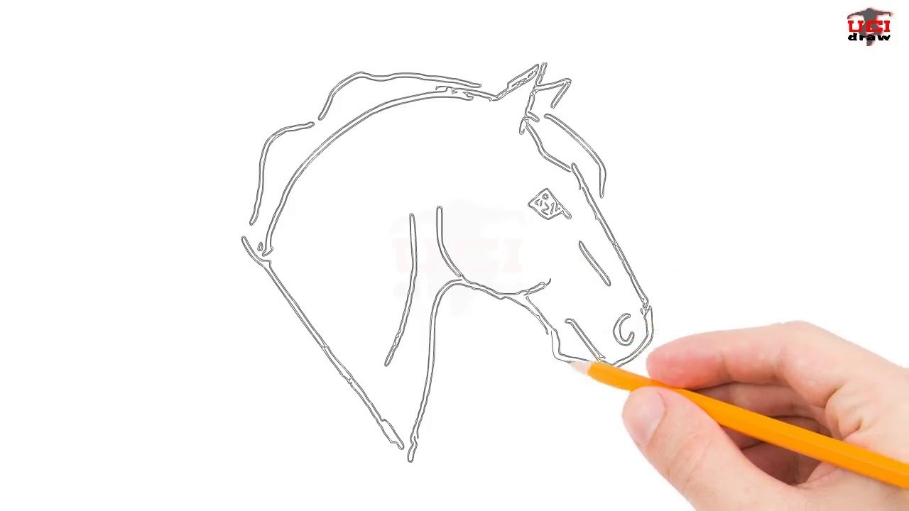 1280x720 How To Draw A Horse Head Step By Step Easy For Beginners Simple