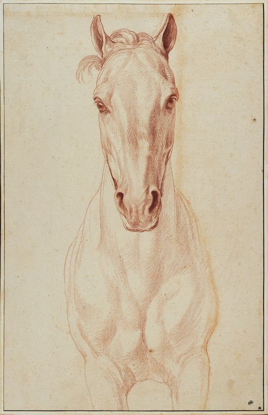 552x853 The Art Of Curmudgeonly Bouchardon Horse Head, Animal Drawings