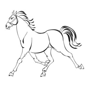 300x300 Horse Drawing Tutorial Archives