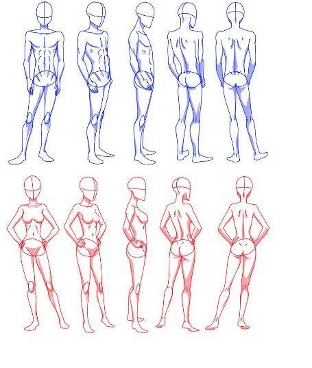 human body drawing reference at getdrawings com free for personal
