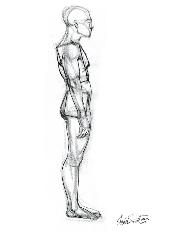 736x952 46 Best Figure Drawing Reference Images On Human