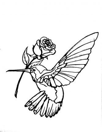 333x431 Hummingbird Clipart Hummingbird Outline