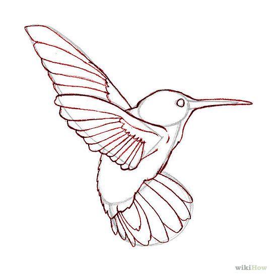 540x549 Draw Hummingbirds Hummingbird, Drawings And Bird