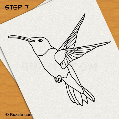 400x400 Step By Step Instructions To Draw A Hummingbird