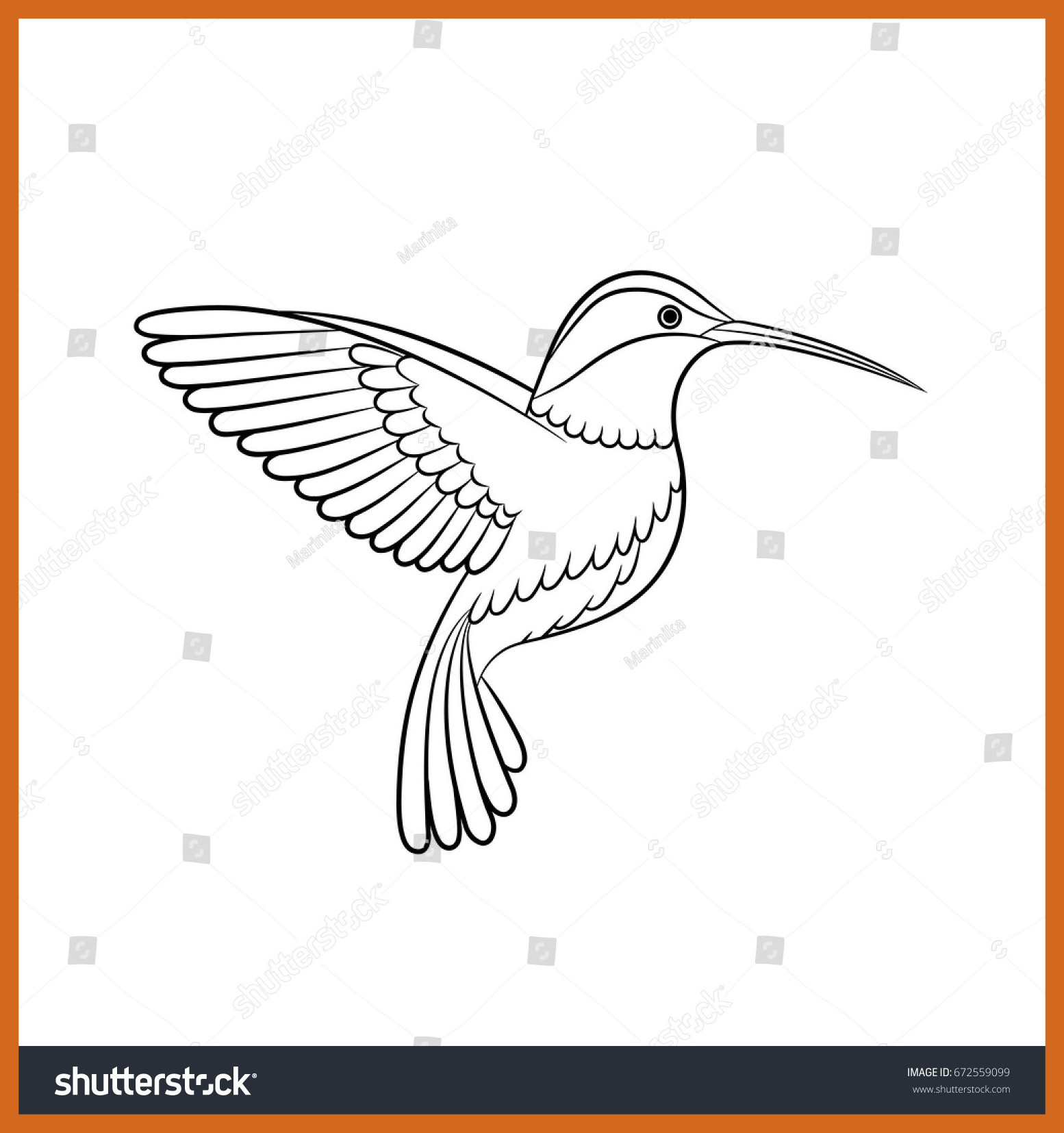 1554x1654 Stunning Outline Drawing Hummingbird Vector Isolated Stock Hd