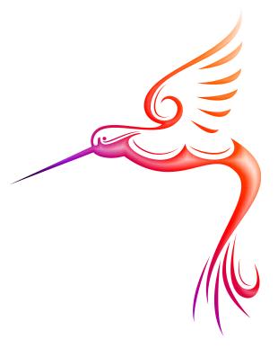 310x387 Hummingbird Drawing Outline