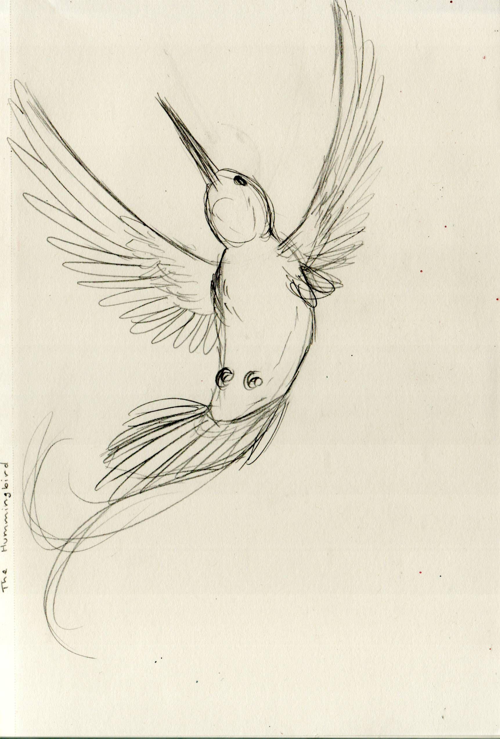 1723x2548 Simple Hummingbird Design
