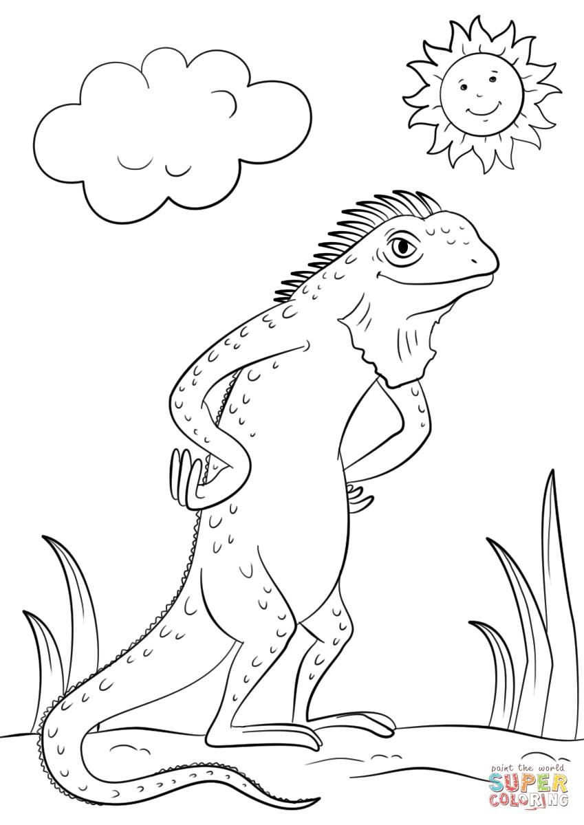 849x1200 How To Draw A Iguana Cartoon Iguana Coloring Page Free Printable