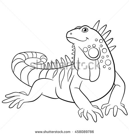 Iguana Drawing Outline
