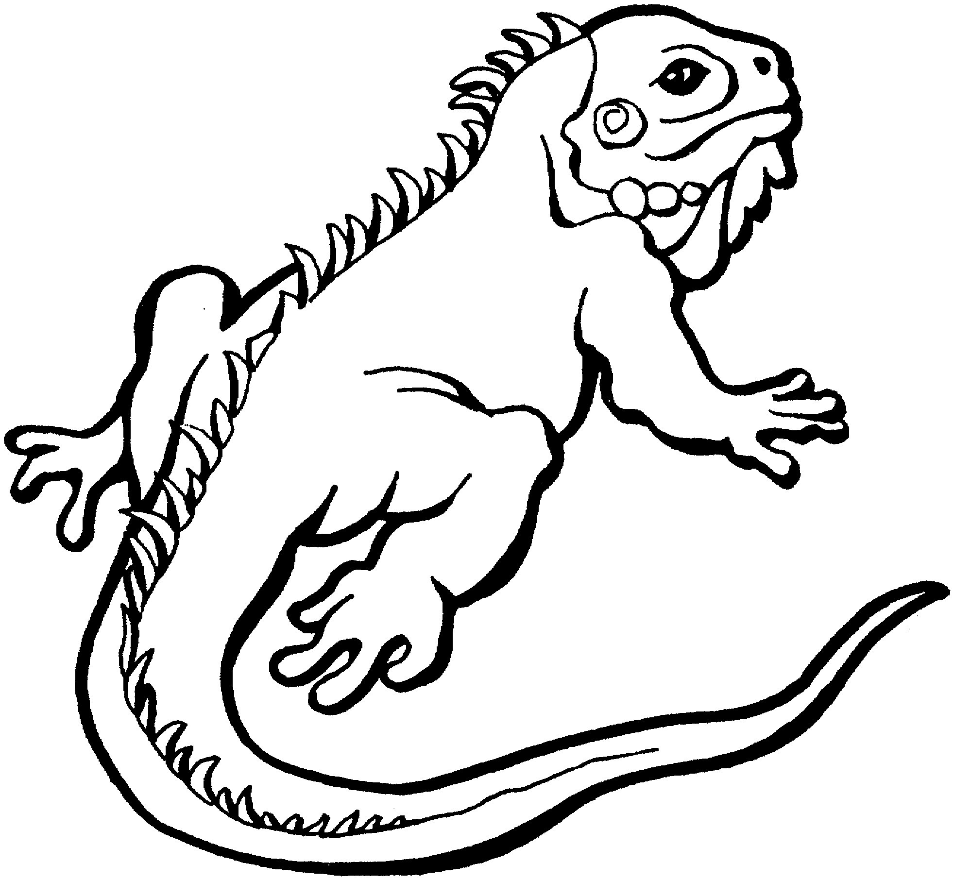 1964x1812 Iguana Coloring Pages New Iguana Coloring Pages For Kids Outline