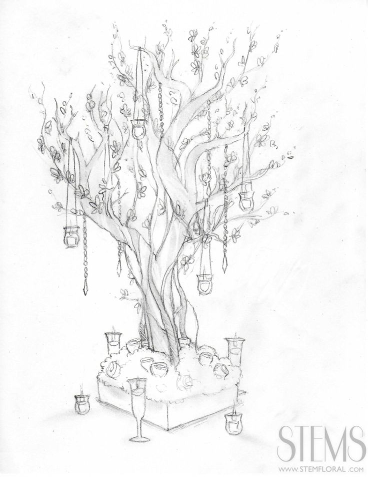 Ikebana Drawing