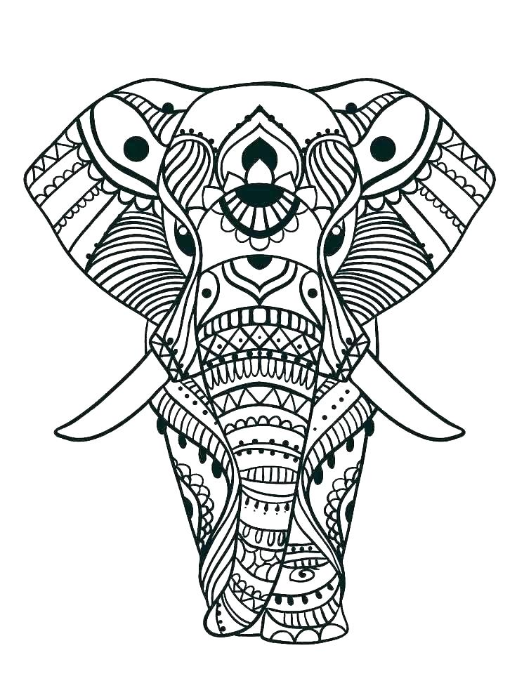736x980 Elephant Color Pages Print Elephant Coloring Page Coloring Baby
