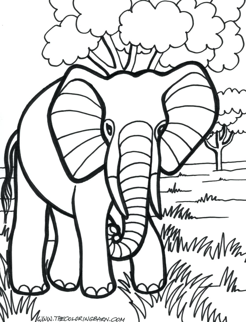 1000x1310 Enormous Elephant Color Sheet Coloring Pages Senhos Para Cute