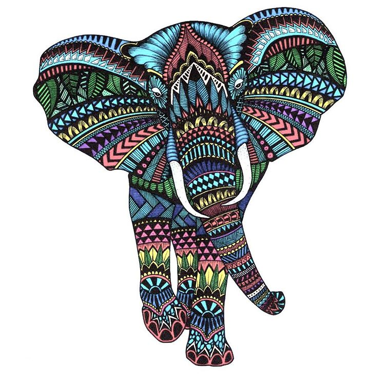 750x750 Collection Of Colorful Indian Elephant Drawing High Quality