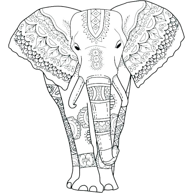 618x618 Coloring Pages Of Elephants The Elephant Coloring Page Elephant