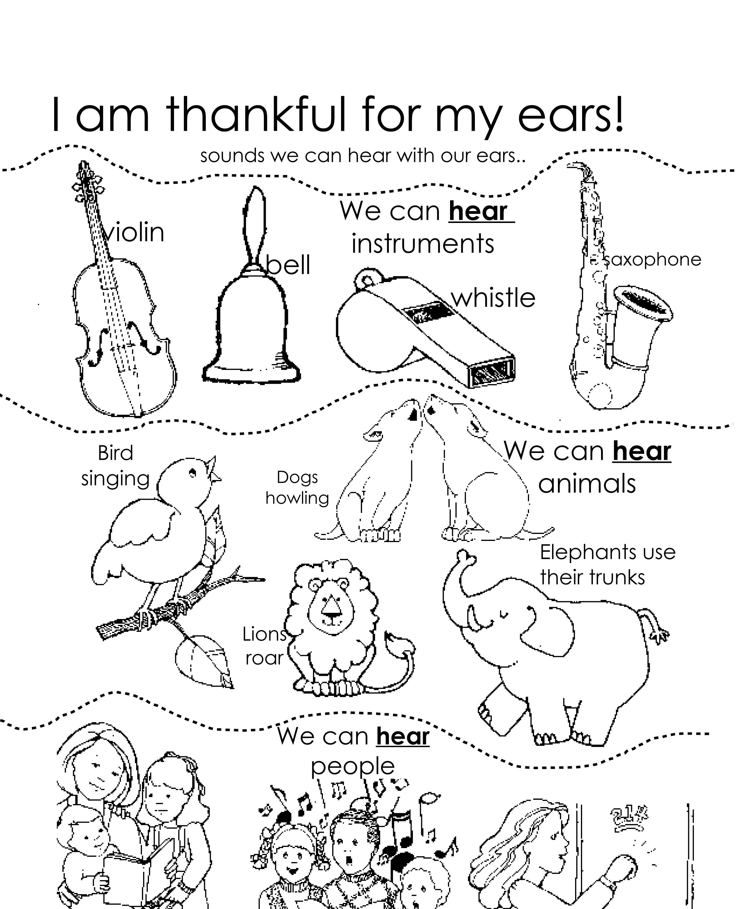 inner ear drawing at getdrawings