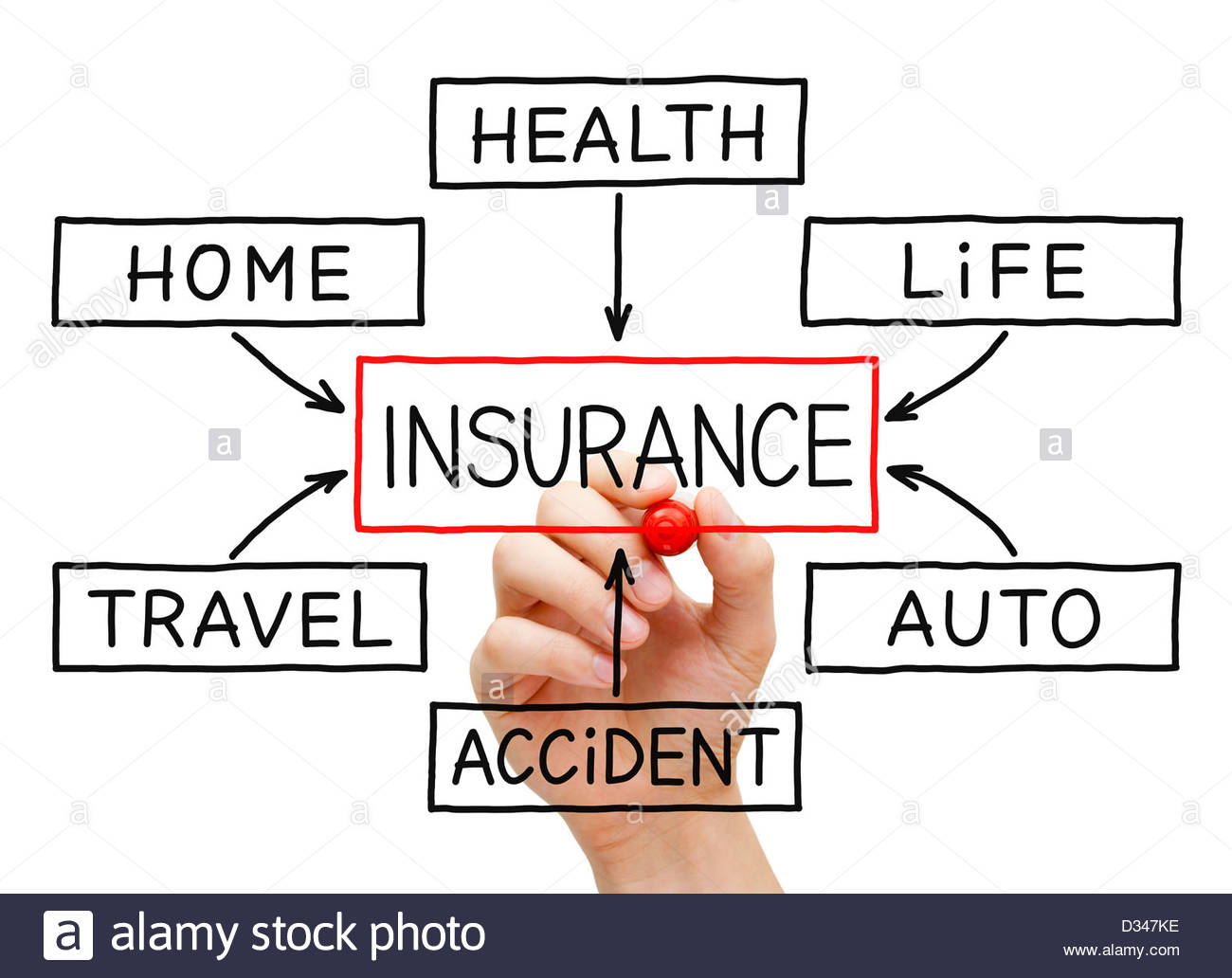 1300x1032 Hand Drawing Insurance Flow Chart On Transparent Wipe Board Stock