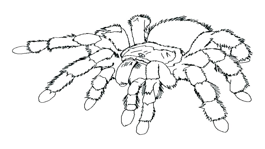 1024x576 Iron Spider Coloring Pages S S S S Iron Spider Coloring Pages Iron