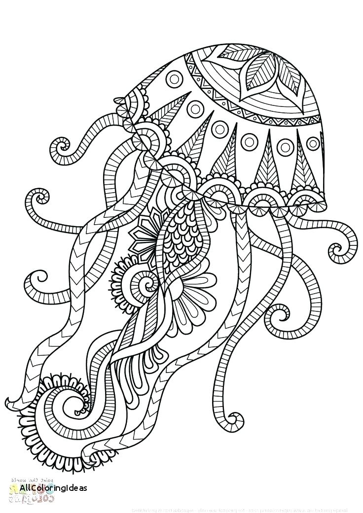 Jellyfish Drawing Color at GetDrawings