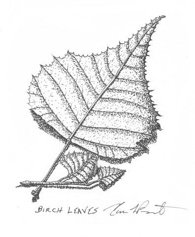 Karen Drawing