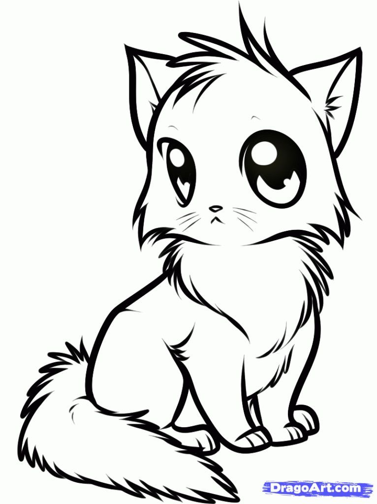 766x1024 How To Draw A Cute Anime Cat Step By Step Anime Animals Anime Draw