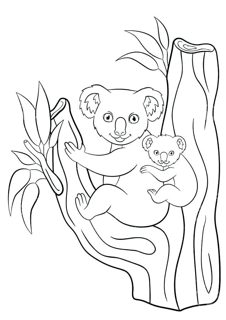 724x1024 Koala Coloring Page Fresh Koala Coloring Pages For Koala Bear