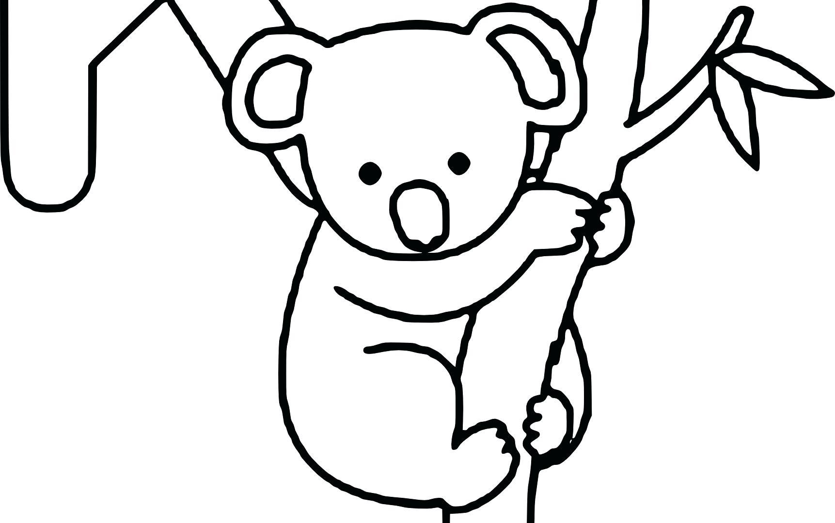Koala Drawing Cute at GetDrawings   Free download