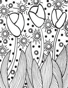 236x306 30 Best Fiar Lentil Images On Eye Contacts, Lentils