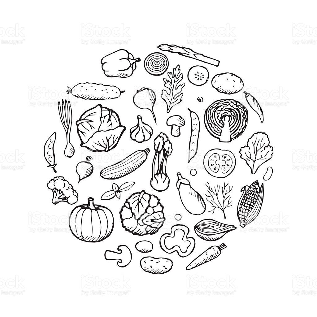1024x1024 Drawn Vegetable