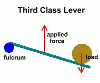 200x165 12 Best Levers Images On Physical Science, Physics