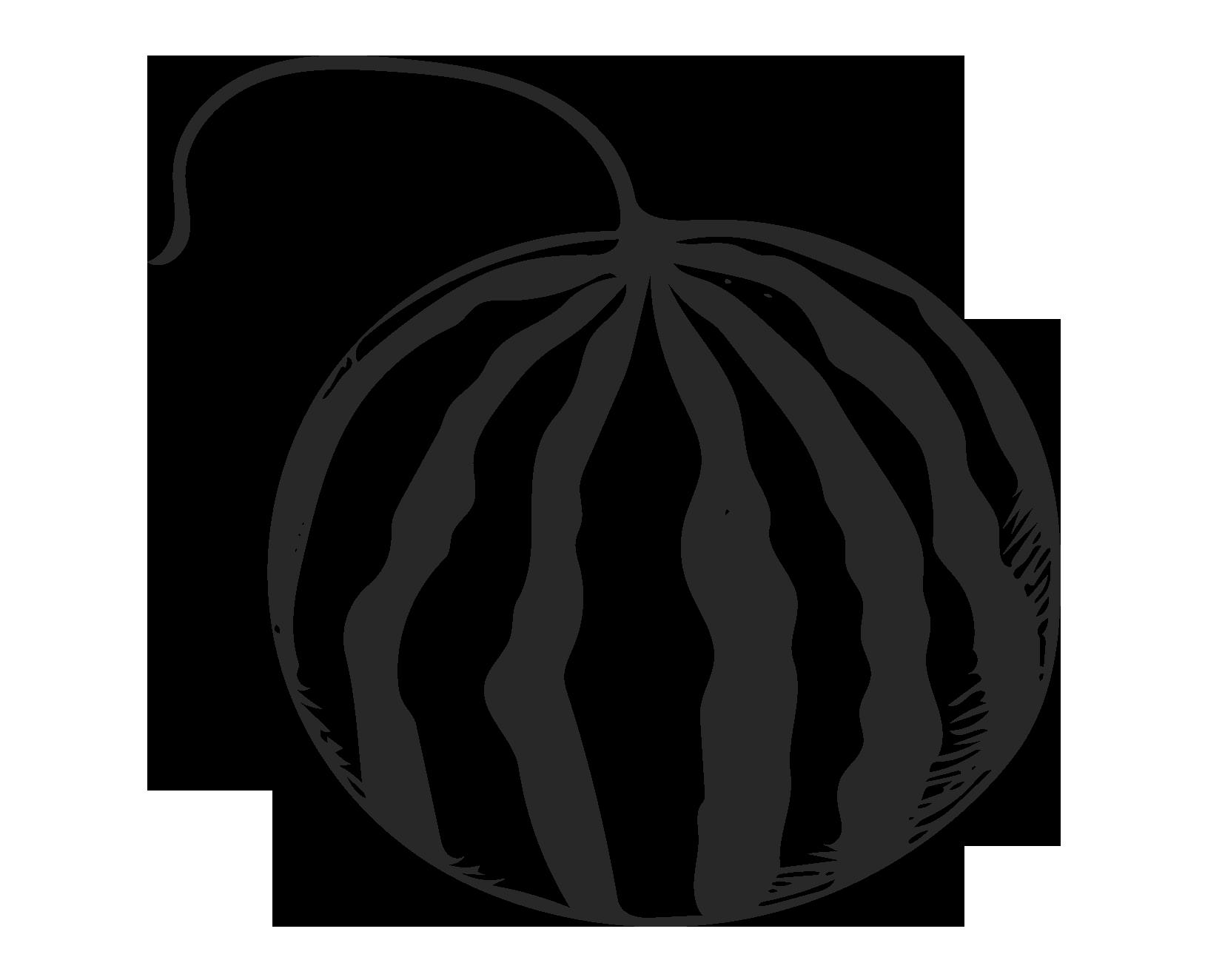 1628x1324 Drawing Fruit