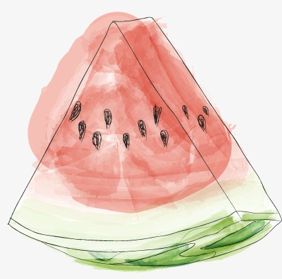 410x405 Line Drawing Of Watermelon, Cartoon, Animation, Animal Png Image