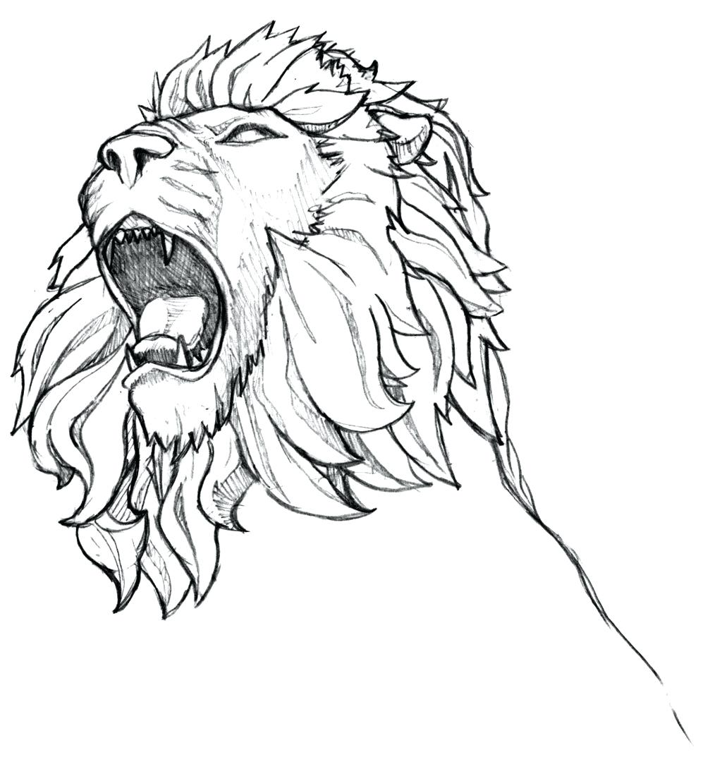 1024x1087 Musings Roaring Like A Lion Roaring Lion Coloring Page