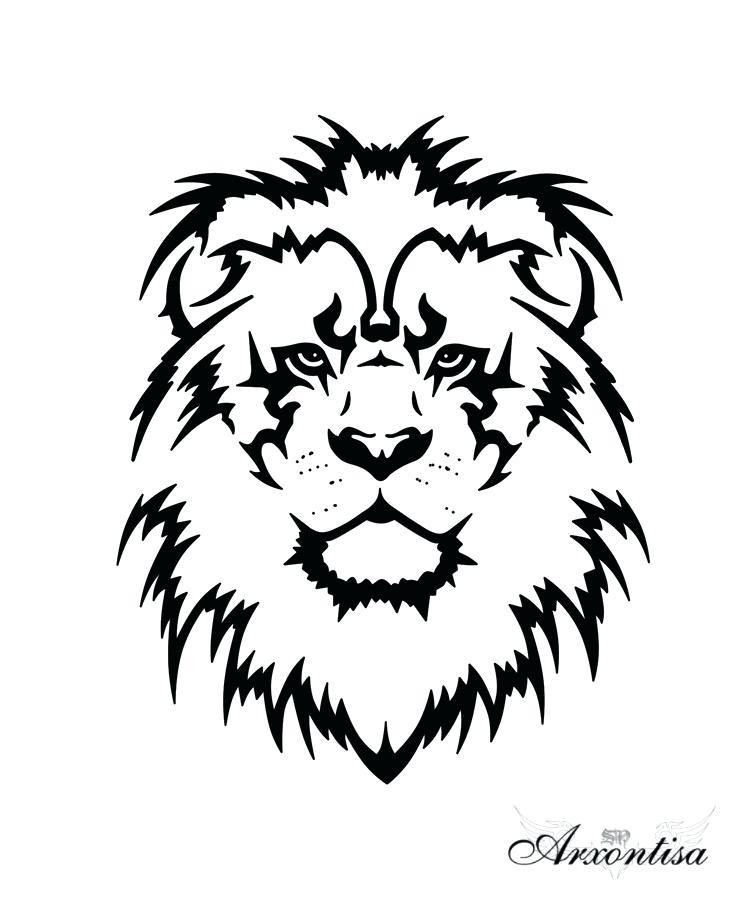 752x904 Lion Head Outline The Best Lion Of Lion Head Silhouette Stock