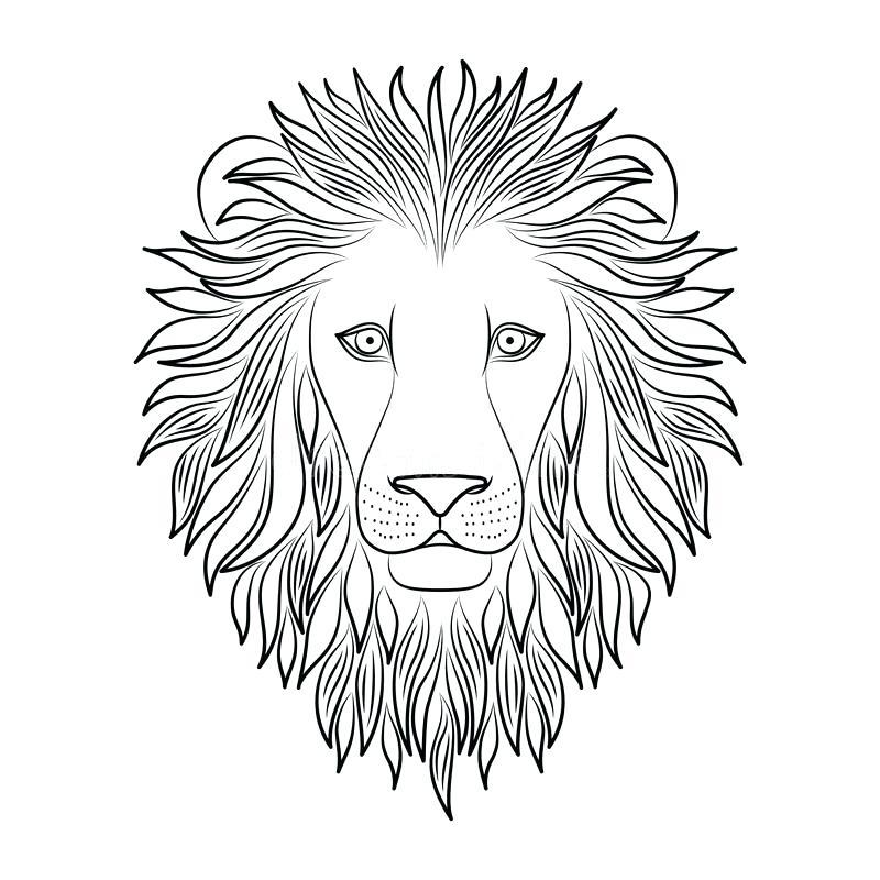 800x800 Cute Lion Outline Google Search Baby Stuff Outlines Cute Lion