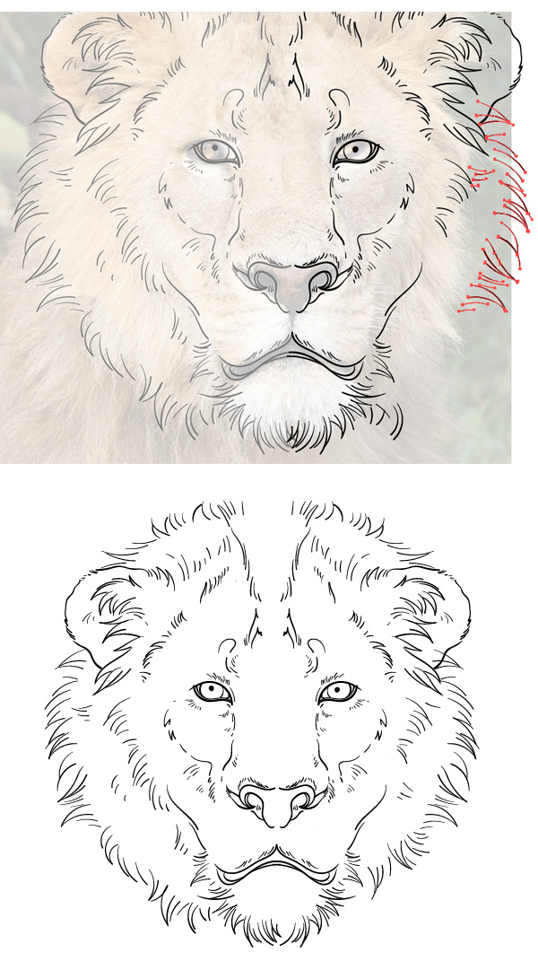 600x1091 Draw The Cowardly Lion From The Wizard Of Oz In Adobe Illustrator