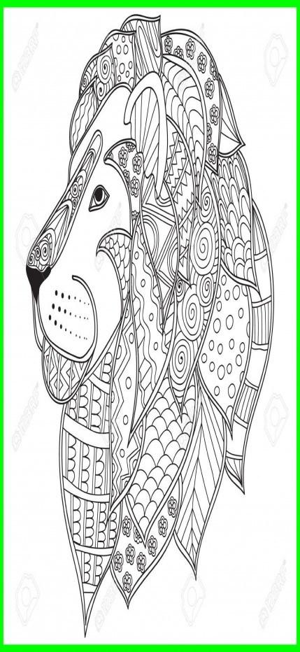 429x932 Fascinating Hand Drawn Ornamental Outline Lion Head Illustration
