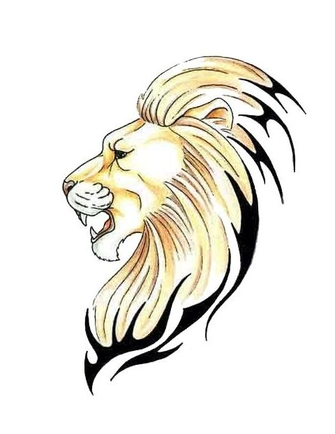 480x622 Angry Lion Head Side View With Tribal Design Hair Tattoo.jpg (480