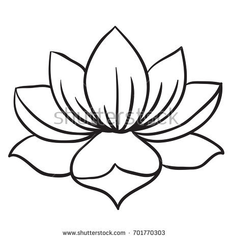 Lotus Flower Black And White Drawing