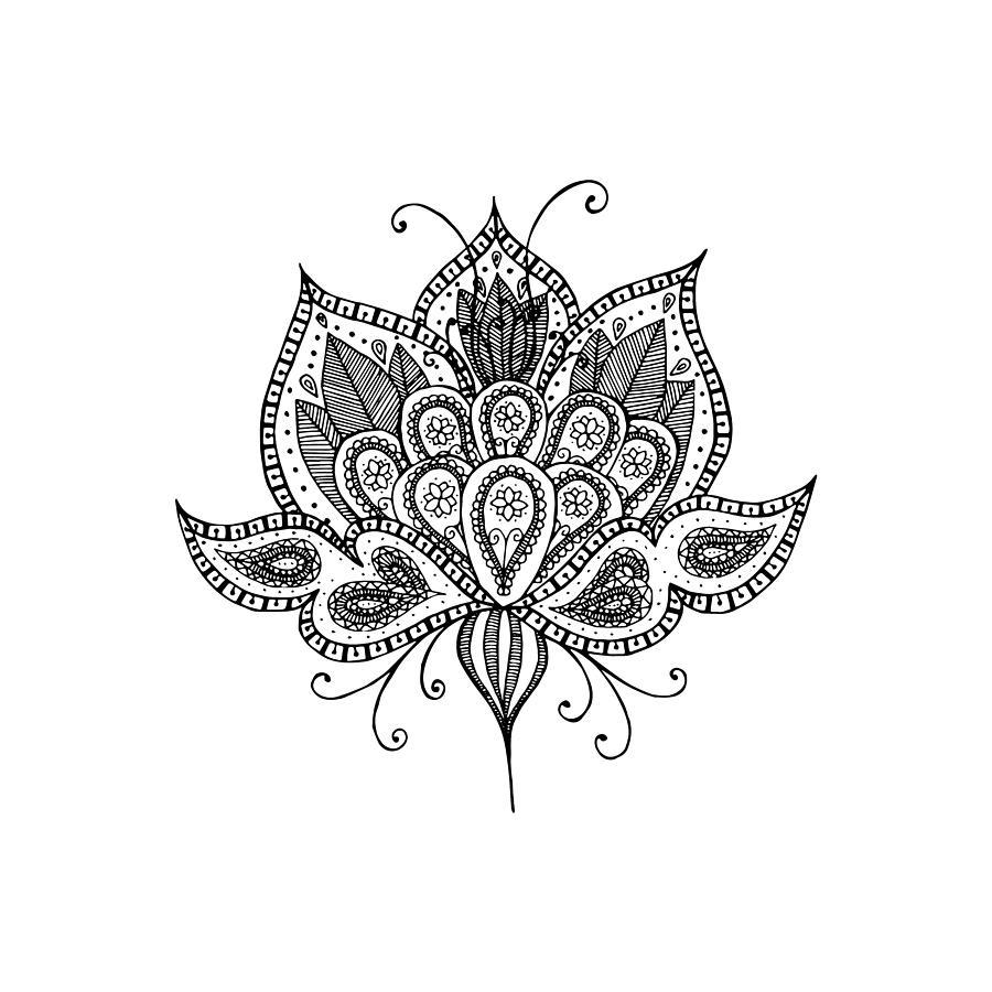 900x900 Lotus Flower Drawing Lotus Flowers Drawing Images Lotus Flower