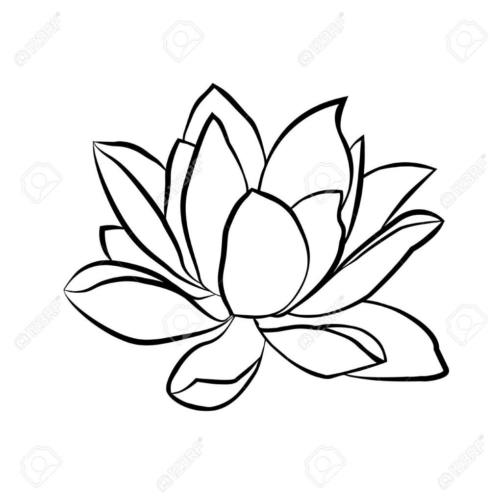 1024x1024 Lotus Flower Line Drawing Lotus Flower Line Drawing Lotus Flowers