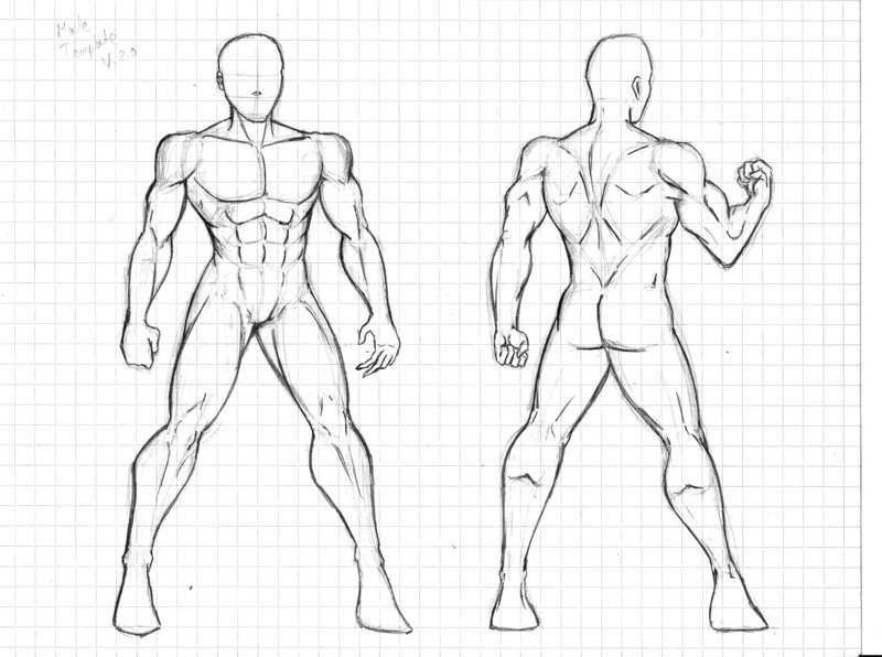 Male Body Drawing Template at GetDrawings.com | Free for personal ...