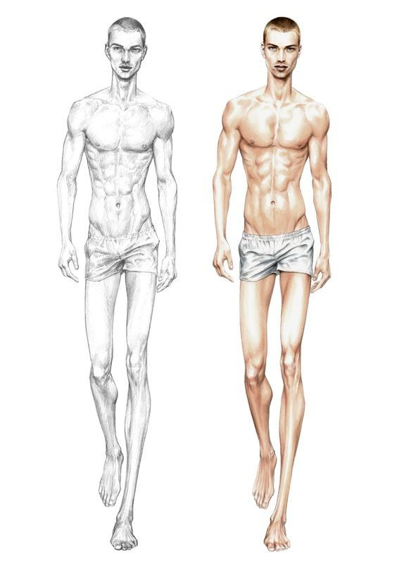 Male Body Drawing Template At Getdrawings Free For Personal