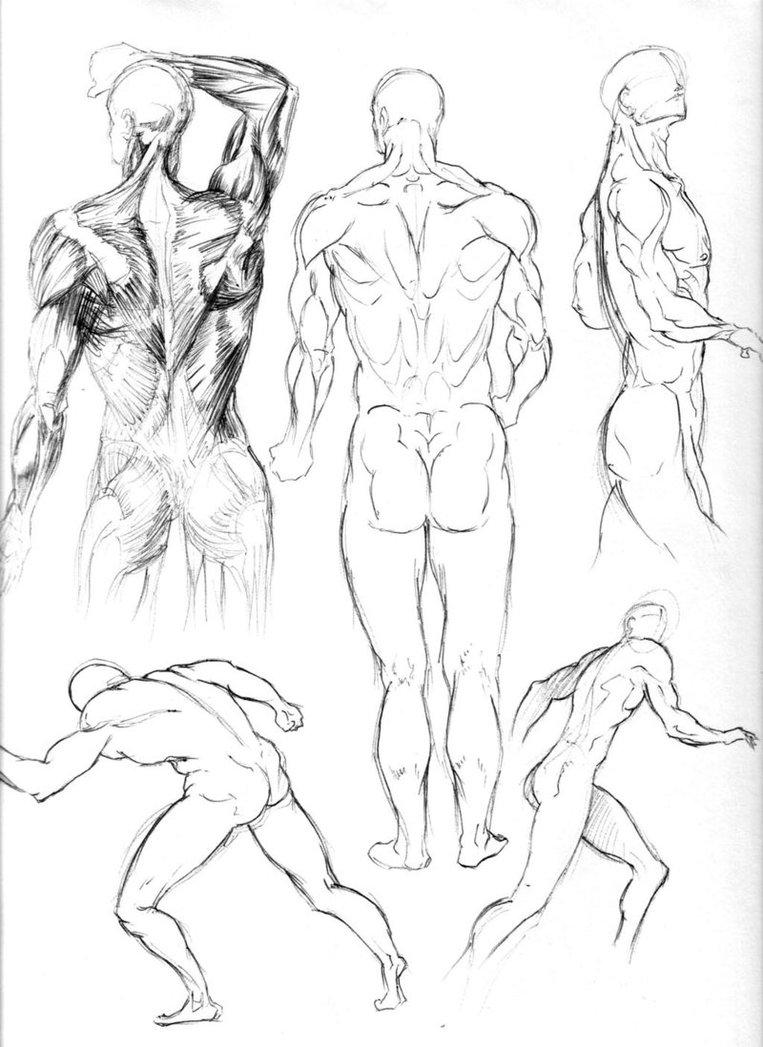 763x1047 Figure Drawing Studies