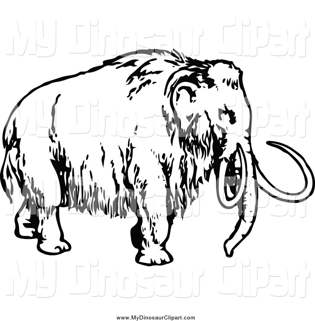 1024x1044 How To Draw A Mammoth Step 8 For Kids Tearing Drawing Thatswhatsup
