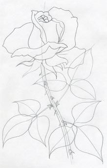219x343 How To Draw A Rose By Candice Art Tips Rose